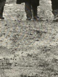 サタンタンゴ泥.jpg