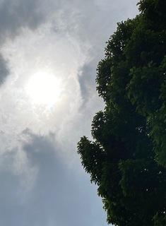 気象通報.jpg